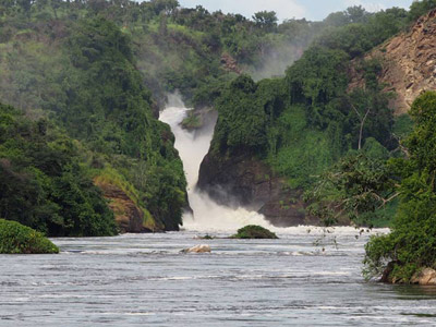 murchison falls national park, kidepo national park and murchison falls tour, elephants in murchison falls