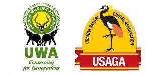 fm adventure safaris, uganda tour operators, gorilla and adventure safaris